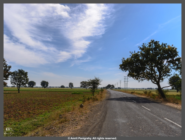 An empty stretch of road between Ujjain and Mandav, in Madhya Pradesh, India after almost 25-30 kms of non-existent roads.